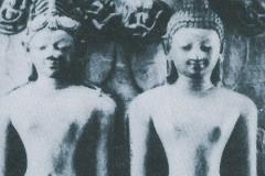 dharma1