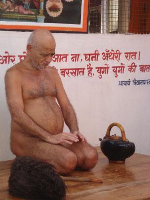 Vidyasagar Maharaj