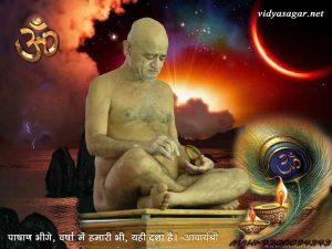Acharyashri6 (28)