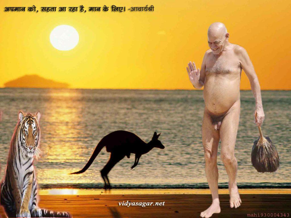 Acharyashri6 (42)